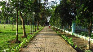 Rampal Sport Area